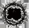 logo-100x100-1